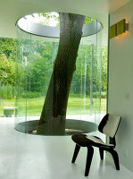 Bildno.: 11017423<br/><b>Feature: 11017413 - Gourmets&#39; Pavilion</b><br/>Working in glass boxes around an old tree<br />living4media / Limbour, Bertrand