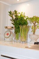 Bildno.: 11018629<br/><b>Feature: 11018591 - Relaxed but stylish</b><br/>Hamptons style beach house near Palm Beach<br />living4media / Bayside