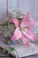 Bildnr.: 11063689<br/><b>Feature: 11063685 - Edel &amp; wild</b><br/>Ideen f&#252;r kreative Blumenstr&#228;u&#223;e<br />living4media / Sch&#252;tz, Anke