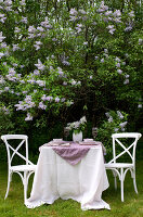 Bildno.: 11126203<br/><b>Feature: 11126197 - Lilac and Leisure</b><br/>Lilacs and the scent of summer<br />living4media / Nordstrom, Annette
