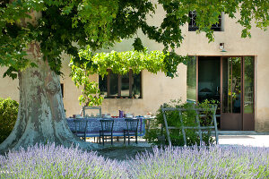 Bildno.: 11136455<br/><b>Feature: 11136451 - Bastide La Garance</b><br/>B &amp; B in beautiful Provence<br />living4media / Madamour, Christophe