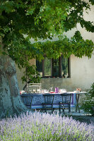Bildno.: 11136461<br/><b>Feature: 11136451 - Bastide La Garance</b><br/>B &amp; B in beautiful Provence<br />living4media / Madamour, Christophe