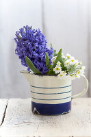 Bildno.: 11144887<br/><b>Feature: 11144875 - Hyacinths for Easter</b><br/>Blue, pink or white – hyacinths bring scent and sensibility to every table<br />living4media / Schindler, Martina
