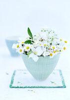 Bildnr.: 11146867<br/><b>Feature: 11146866 - Tausendsch&#246;n</b><br/>G&#228;nsebl&#252;mchen, die Wiesen-Fee unter den Blumen, als Deko<br />living4media / Bauer, Christine