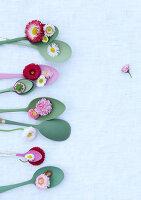 Bildnr.: 11146883<br/><b>Feature: 11146866 - Tausendsch&#246;n</b><br/>G&#228;nsebl&#252;mchen, die Wiesen-Fee unter den Blumen, als Deko<br />living4media / Bauer, Christine