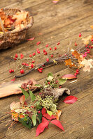 Bildno.: 11188289<br/><b>Feature: 11188280 - Autumn Magic</b><br/>The garden yields colourful leaves, nuts and fruit to decorate your home<br />living4media / Raider, Peter