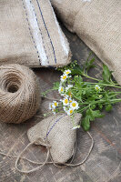Bildno.: 11195061<br/><b>Feature: 11195046 - Sackcloth and String</b><br/>Great things for the garden made of simple materials<br />living4media / Raider, Peter