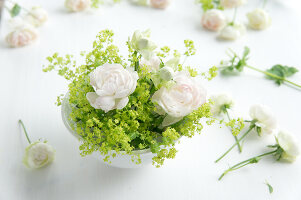 Bildno.: 11197305<br/><b>Feature: 11197304 - Roses and Lady's Mantle</b><br/>Delicate floral decoration<br />living4media / Schindler, Martina