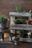 Bildno.: 11204881<br/><b>Feature: 11204844 - Trash to Treasure</b><br/>How to transform transport pallets into furniture<br />living4media / Raider, Peter