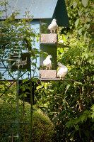 Bildno.: 11223661<br/><b>Feature: 11223659 - Green and Grand</b><br/>Romantic garden in Limburg, Belgium<br />living4media / Pietrek, Sibylle