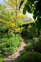 Bildno.: 11223677<br/><b>Feature: 11223659 - Green and Grand</b><br/>Romantic garden in Limburg, Belgium<br />living4media / Pietrek, Sibylle