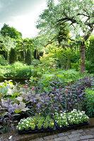Bildnr.: 11223715<br/><b>Feature: 11223710 - Formvollendet</b><br/>Heerenhof, ein idyllischer Garten in Maastricht<br />living4media / Pietrek, Sibylle
