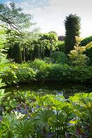 Bildnr.: 11223717<br/><b>Feature: 11223710 - Formvollendet</b><br/>Heerenhof, ein idyllischer Garten in Maastricht<br />living4media / Pietrek, Sibylle