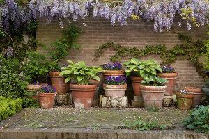 Bildnr.: 11223727<br/><b>Feature: 11223710 - Formvollendet</b><br/>Heerenhof, ein idyllischer Garten in Maastricht<br />living4media / Pietrek, Sibylle