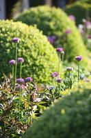 Bildnr.: 11223743<br/><b>Feature: 11223710 - Formvollendet</b><br/>Heerenhof, ein idyllischer Garten in Maastricht<br />living4media / Pietrek, Sibylle