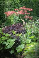 Bildnr.: 11223745<br/><b>Feature: 11223710 - Formvollendet</b><br/>Heerenhof, ein idyllischer Garten in Maastricht<br />living4media / Pietrek, Sibylle