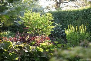Bildnr.: 11223747<br/><b>Feature: 11223710 - Formvollendet</b><br/>Heerenhof, ein idyllischer Garten in Maastricht<br />living4media / Pietrek, Sibylle