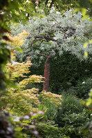Bildnr.: 11223751<br/><b>Feature: 11223710 - Formvollendet</b><br/>Heerenhof, ein idyllischer Garten in Maastricht<br />living4media / Pietrek, Sibylle