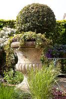 Bildno.: 11223851<br/><b>Feature: 11223835 - Woman's Touch</b><br/>Lush garden in the Netherlands<br />living4media / Pietrek, Sibylle