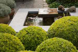 Bildno.: 11223853<br/><b>Feature: 11223835 - Woman's Touch</b><br/>Lush garden in the Netherlands<br />living4media / Pietrek, Sibylle