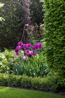 Bildno.: 11223859<br/><b>Feature: 11223835 - Woman's Touch</b><br/>Lush garden in the Netherlands<br />living4media / Pietrek, Sibylle