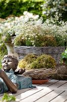Bildno.: 11223863<br/><b>Feature: 11223835 - Woman's Touch</b><br/>Lush garden in the Netherlands<br />living4media / Pietrek, Sibylle