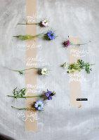 Bildnr.: 11254599<br/><b>Feature: 11254582 - Vintage Flower</b><br/>Die Jungfer im Gr&#252;nen klingt altmodisch, ist aber top angesagt<br />living4media / Bauer, Christine
