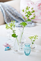 Bildno.: 11255623<br/><b>Feature: 11255620 - Lady&#39;s Mantle</b><br/>Decorating tips using this lovely plant<br />living4media / Weber, Cornelia