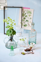 Bildno.: 11255631<br/><b>Feature: 11255620 - Lady&#39;s Mantle</b><br/>Decorating tips using this lovely plant<br />living4media / Weber, Cornelia