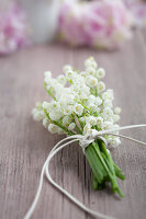 Bildno.: 11261879<br/><b>Feature: 11261856 - Lily of the Valley</b><br/>Use the flowers of May to decorate and inspire your cuisine<br />living4media / Schindler, Martina