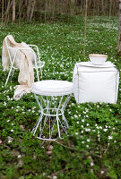 Bildno.: 11265901<br/><b>Feature: 11265894 - The Wonder of White</b><br/>White accessories, furniture and flowers<br />living4media / Nordstrom, Annette