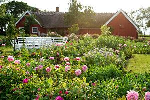Bildno.: 11271979<br/><b>Feature: 11271958 - Swedish Garden</b><br/>Garden in Lynga<br />living4media / M&#246;ller, Cecilia