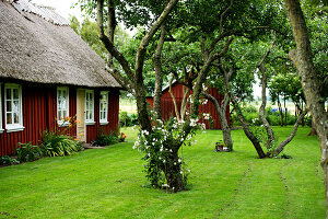 Bildno.: 11272019<br/><b>Feature: 11271958 - Swedish Garden</b><br/>Garden in Lynga<br />living4media / M&#246;ller, Cecilia