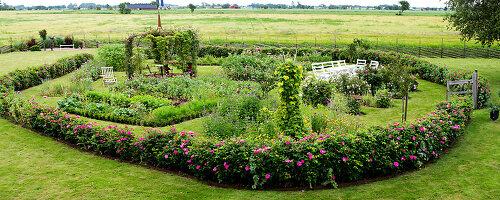 Bildno.: 11272021<br/><b>Feature: 11271958 - Swedish Garden</b><br/>Garden in Lynga<br />living4media / M&#246;ller, Cecilia