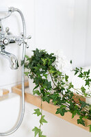 Bildno.: 11304467<br/><b>Feature: 11304464 - Blooming Bath</b><br/>Flowers in the bathroom add charm and flourish in the warm damp atmosphere<br />living4media / M&#246;ller, Cecilia