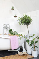 Bildno.: 11304491<br/><b>Feature: 11304464 - Blooming Bath</b><br/>Flowers in the bathroom add charm and flourish in the warm damp atmosphere<br />living4media / M&#246;ller, Cecilia