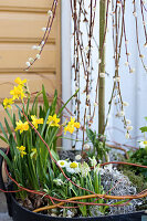 Bildno.: 11304643<br/><b>Feature: 11304632 - Spring at Last</b><br/>Spring bulbs and youthful gardeners define the season<br />living4media / M&#246;ller, Cecilia