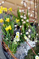 Bildno.: 11304649<br/><b>Feature: 11304632 - Spring at Last</b><br/>Spring bulbs and youthful gardeners define the season<br />living4media / M&#246;ller, Cecilia