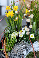 Bildno.: 11304653<br/><b>Feature: 11304632 - Spring at Last</b><br/>Spring bulbs and youthful gardeners define the season<br />living4media / M&#246;ller, Cecilia