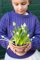 Bildno.: 11304657<br/><b>Feature: 11304632 - Spring at Last</b><br/>Spring bulbs and youthful gardeners define the season<br />living4media / M&#246;ller, Cecilia