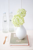 Bildno.: 11305863<br/><b>Feature: 11305840 - The Greening Touch</b><br/>Green flowers add a special kick to any room<br />living4media / Weber, Cornelia