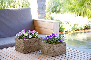 Bildno.: 11325439<br/><b>Feature: 11325345 - The Urban Garden</b><br/>DIY planters that do the job beautifully<br />living4media / Selbermachen Media / Lambertsen, Chris