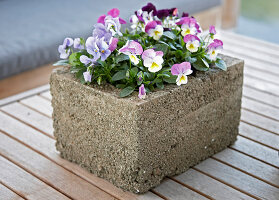 Bildno.: 11325441<br/><b>Feature: 11325345 - The Urban Garden</b><br/>DIY planters that do the job beautifully<br />living4media / Selbermachen Media / Lambertsen, Chris