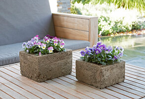 Bildno.: 11325443<br/><b>Feature: 11325345 - The Urban Garden</b><br/>DIY planters that do the job beautifully<br />living4media / Selbermachen Media / Lambertsen, Chris