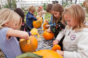 Bildno.: 11345919<br/><b>Feature: 11345897 - Pumpkin Party</b><br/>Pumpkins and Jack-o&#39;-Lanterns<br />living4media / Klazinga, Jansje
