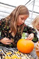 Bildno.: 11345921<br/><b>Feature: 11345897 - Pumpkin Party</b><br/>Pumpkins and Jack-o&#39;-Lanterns<br />living4media / Klazinga, Jansje