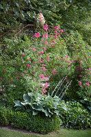 Bildno.: 11346637<br/><b>Feature: 11346627 - The Sculpture Garden</b><br/>Romantic garden in the Saurland, Germany<br />living4media / Pietrek, Sibylle