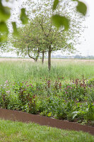 Bildno.: 11347057<br/><b>Feature: 11347016 - The Working Garden</b><br/>Landscape architect&#39;s garden in Krefeld, Germany<br />living4media / Pietrek, Sibylle