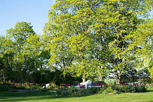 Bildno.: 11349287<br/><b>Feature: 11349267 - Swedish Spring</b><br/>A lush garden in Sweden<br />living4media / M&#246;ller, Cecilia