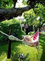 Bildno.: 11351239<br/><b>Feature: 11351209 - Summer Oasis</b><br/>A Danish house made of recycled material<br />living4media / Lene-K